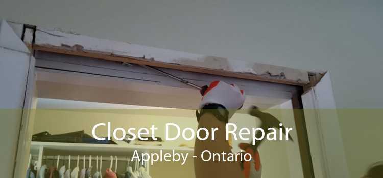 Closet Door Repair Appleby - Ontario