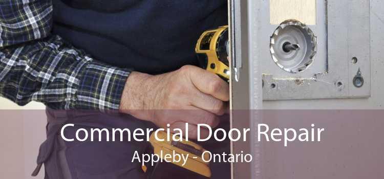 Commercial Door Repair Appleby - Ontario