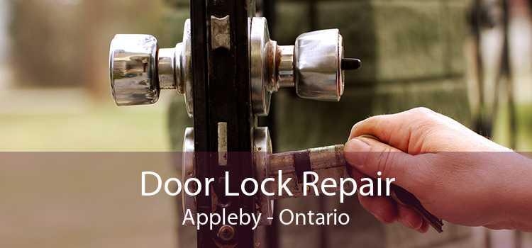 Door Lock Repair Appleby - Ontario