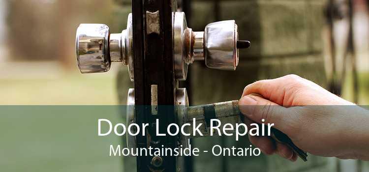 Door Lock Repair Mountainside - Ontario