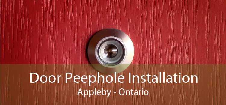 Door Peephole Installation Appleby - Ontario