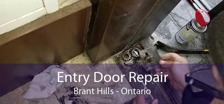 Entry Door Repair Brant Hills - Ontario