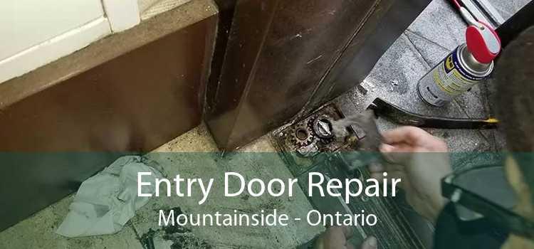 Entry Door Repair Mountainside - Ontario
