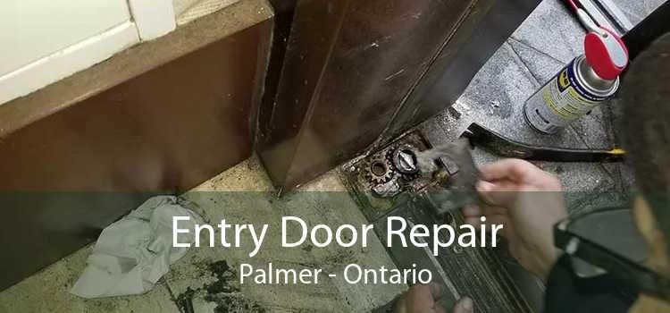 Entry Door Repair Palmer - Ontario