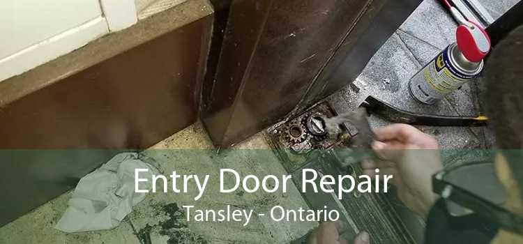 Entry Door Repair Tansley - Ontario