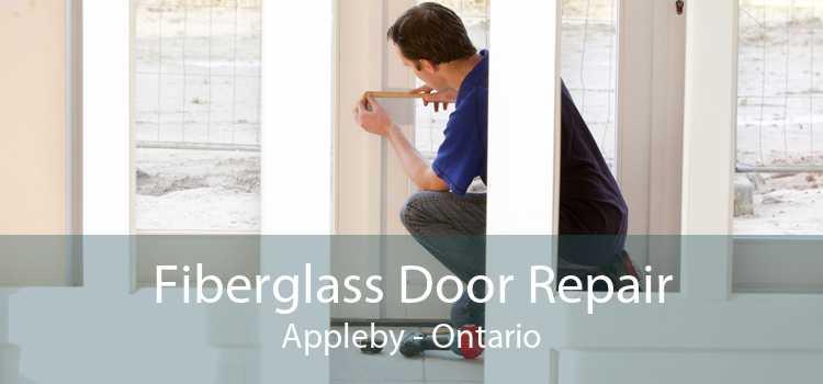Fiberglass Door Repair Appleby - Ontario