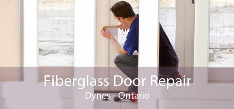Fiberglass Door Repair Dynes - Ontario