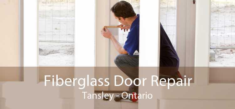 Fiberglass Door Repair Tansley - Ontario