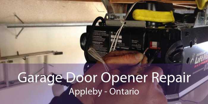 Garage Door Opener Repair Appleby - Ontario