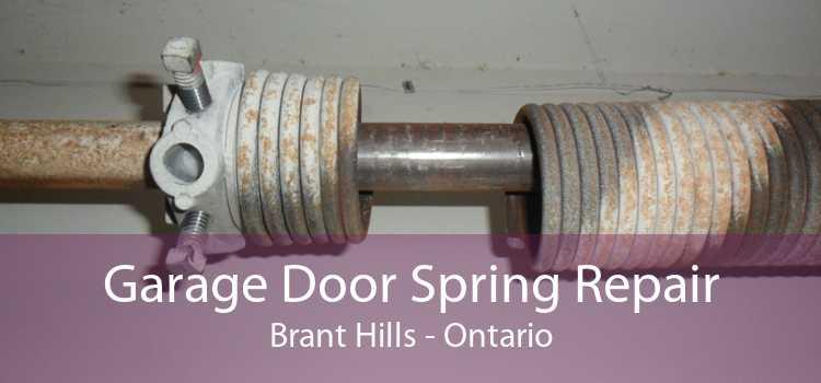 Garage Door Spring Repair Brant Hills - Ontario
