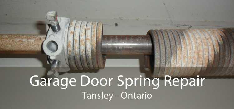 Garage Door Spring Repair Tansley - Ontario