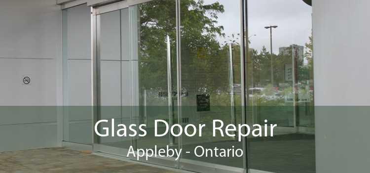 Glass Door Repair Appleby - Ontario