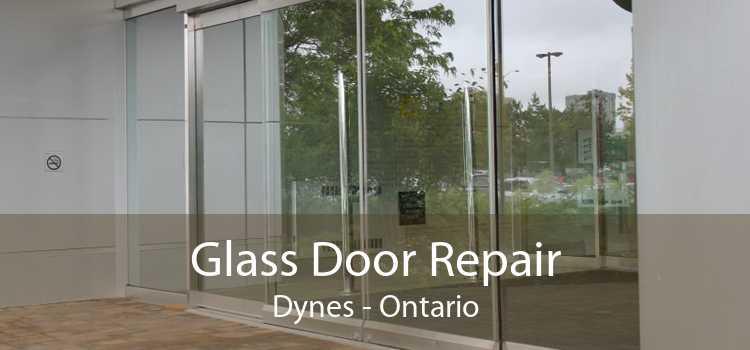 Glass Door Repair Dynes - Ontario