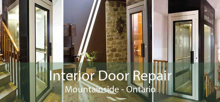 Interior Door Repair Mountainside - Ontario