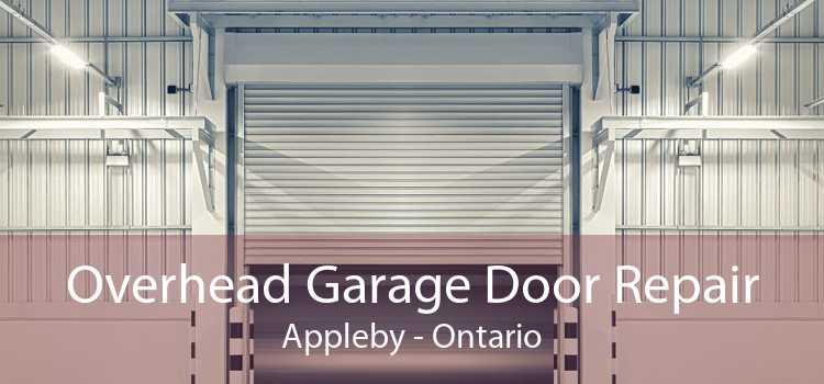 Overhead Garage Door Repair Appleby - Ontario