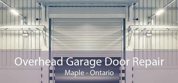 Overhead Garage Door Repair Maple - Ontario