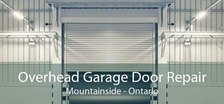 Overhead Garage Door Repair Mountainside - Ontario