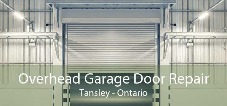 Overhead Garage Door Repair Tansley - Ontario