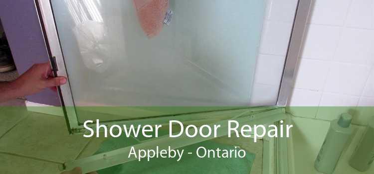 Shower Door Repair Appleby - Ontario