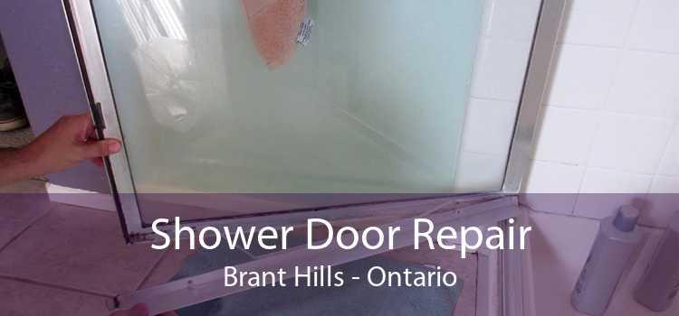 Shower Door Repair Brant Hills - Ontario