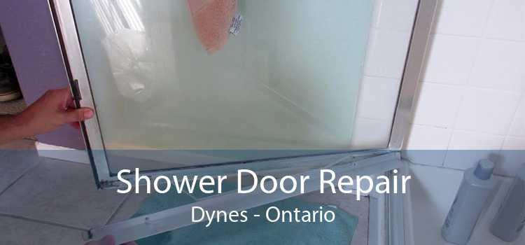 Shower Door Repair Dynes - Ontario