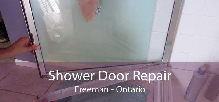 Shower Door Repair Freeman - Ontario