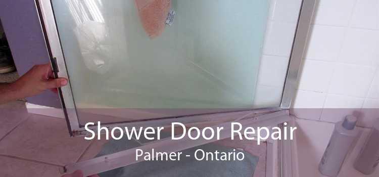 Shower Door Repair Palmer - Ontario