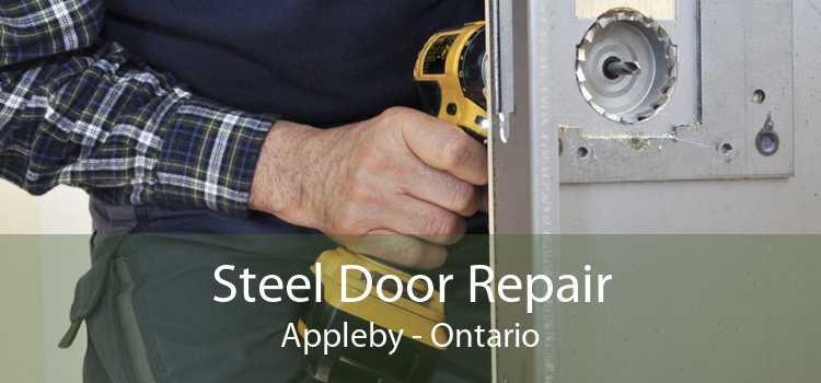 Steel Door Repair Appleby - Ontario