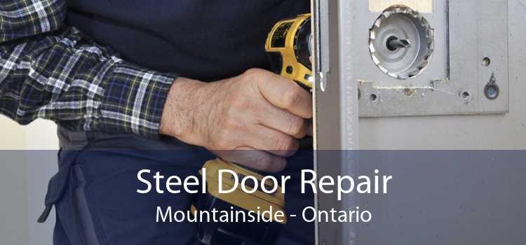 Steel Door Repair Mountainside - Ontario