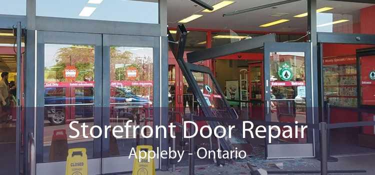 Storefront Door Repair Appleby - Ontario