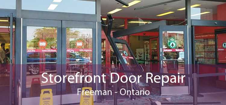 Storefront Door Repair Freeman - Ontario