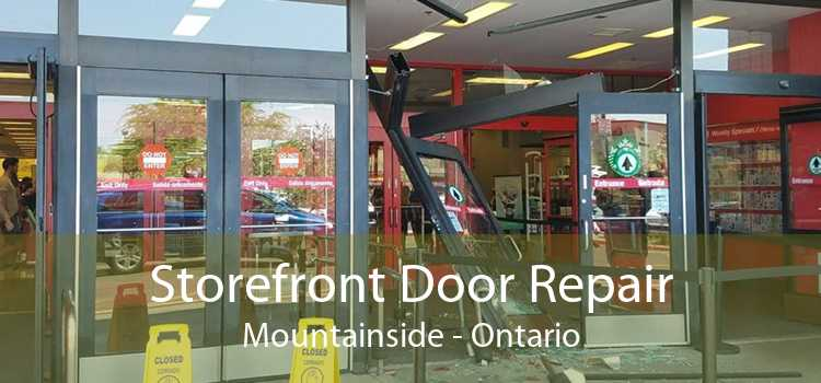 Storefront Door Repair Mountainside - Ontario
