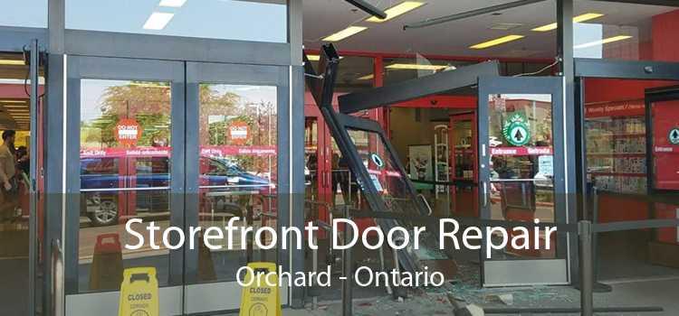 Storefront Door Repair Orchard - Ontario