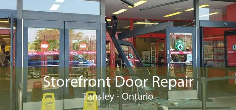 Storefront Door Repair Tansley - Ontario